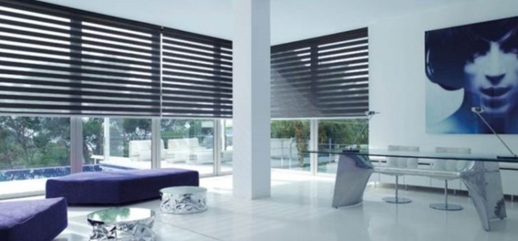 Cortinas Roller Duo (eclipse)